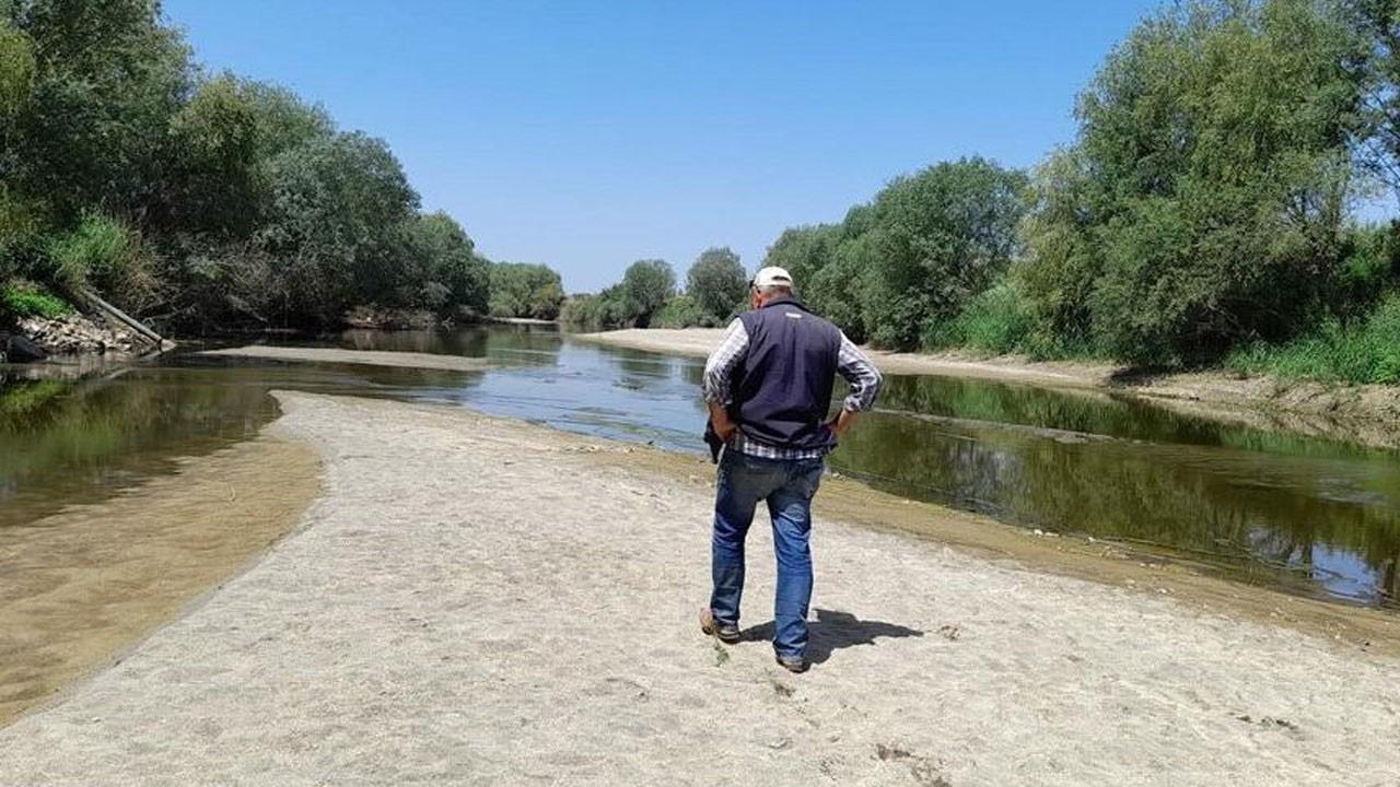 Büyük Menderes Nehri'nde durum çok kötü!
