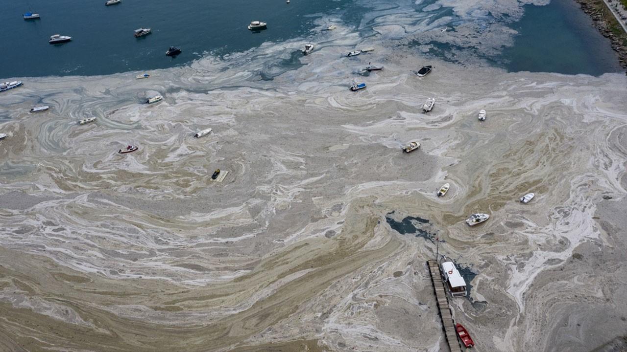 İstanbul sahilleri musilaja teslim