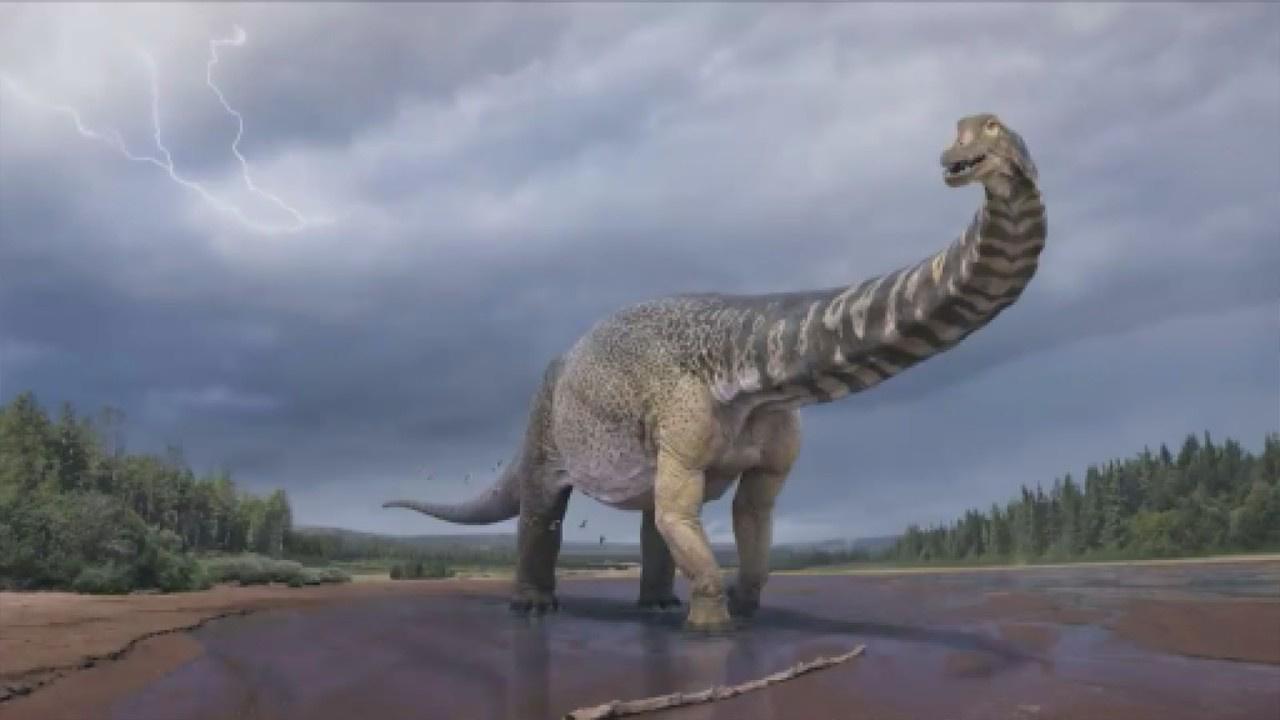 Kıtanın en büyük dinozoru keşfedildi