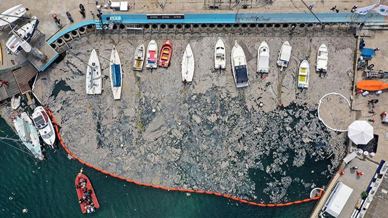 Marmara Denizi'nde son durum! Bakan Kurum paylaştı