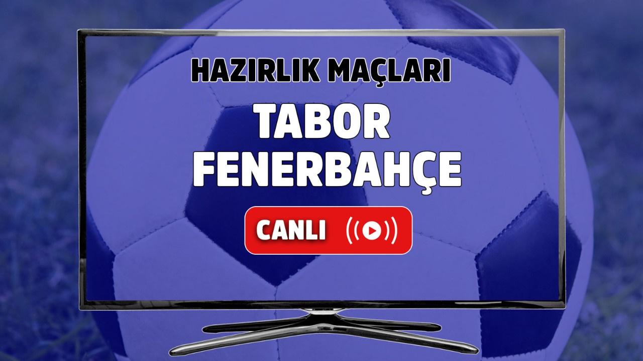 Tabor - Fenerbahçe Canlı