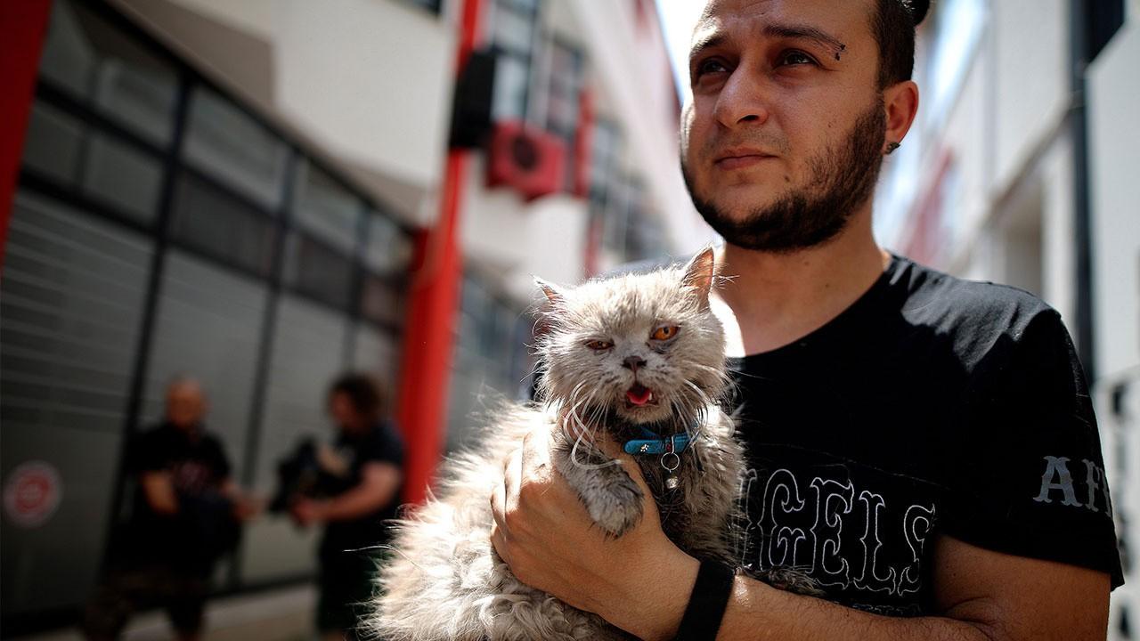 Anne kedi ve 3 yavrusu yangından böyle kurtarıldı