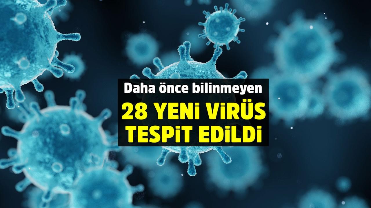 Tibet Platosu'nda bugüne kadar bilinmeyen 28 farklı virüs keşfetti