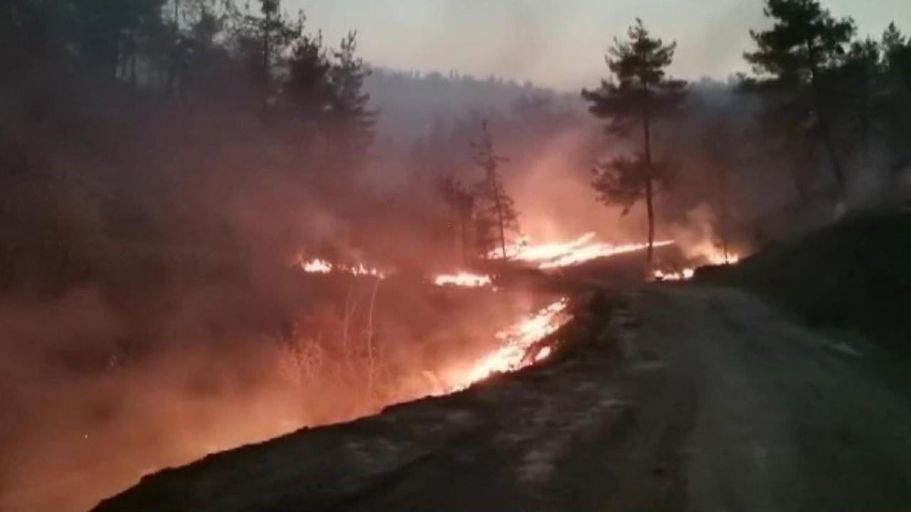 Yangında 25 hektar alan zarar gördü