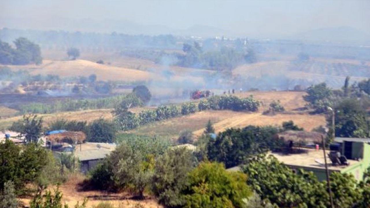 Adana'nın 2 ilçesinde orman yangını!