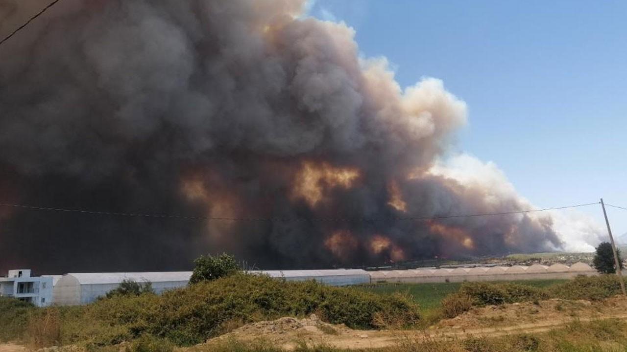 Manavgat cayır cayır yanıyor! Yangına yeniden müdahale başladı