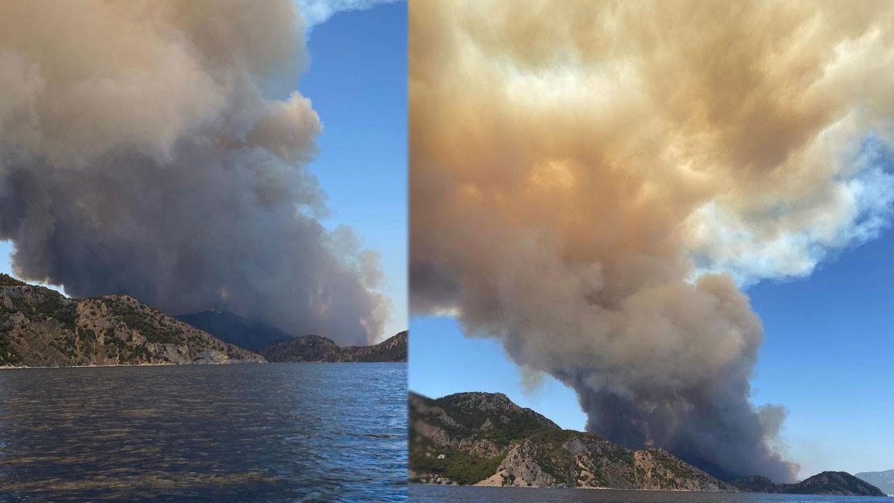 Bodrum ve Köyceğiz'de yangın çıktı