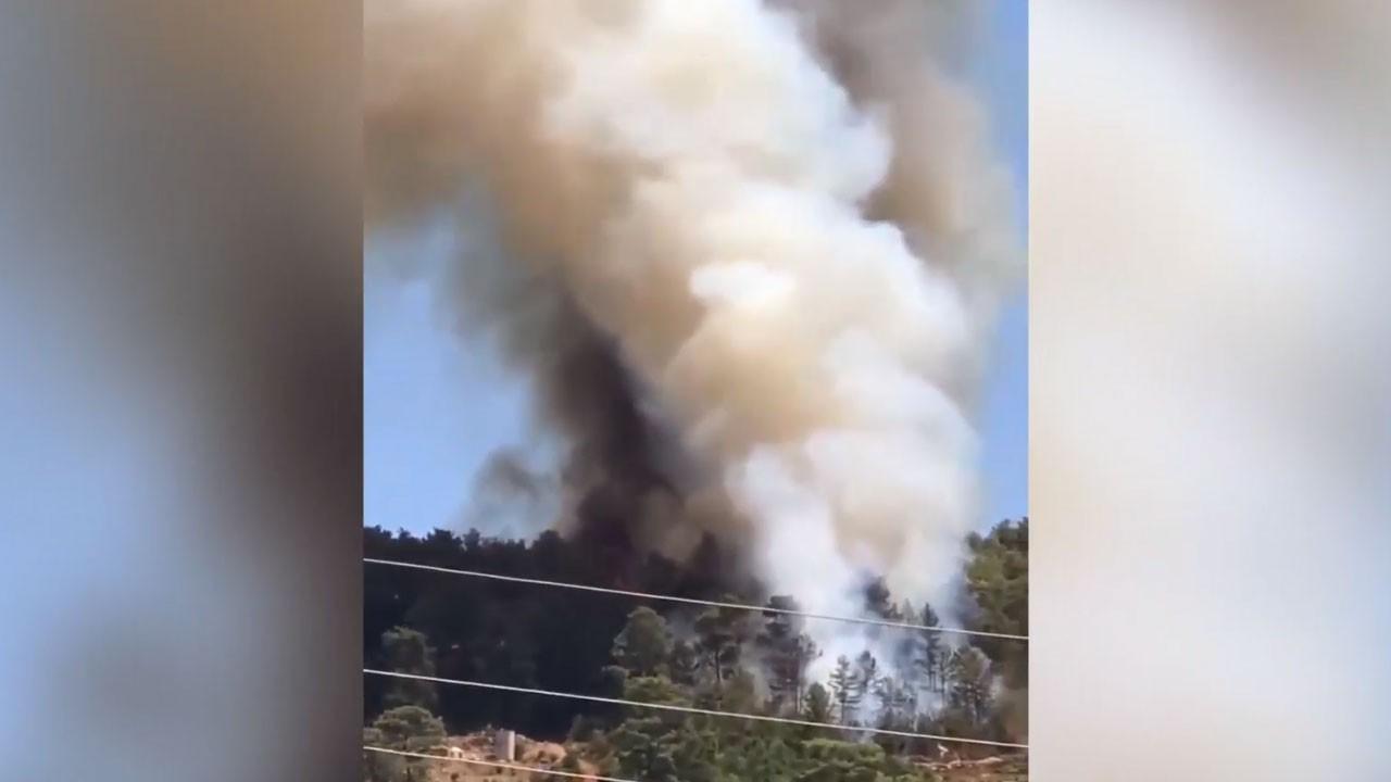 Son dakika... Alanya'da orman yangını çıktı