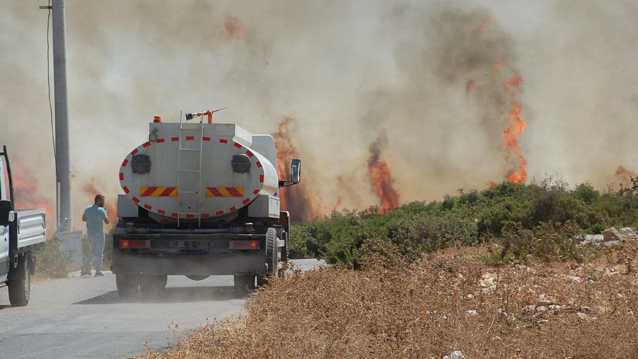 Bodrum ve Didim'de de orman yangınları çıktı