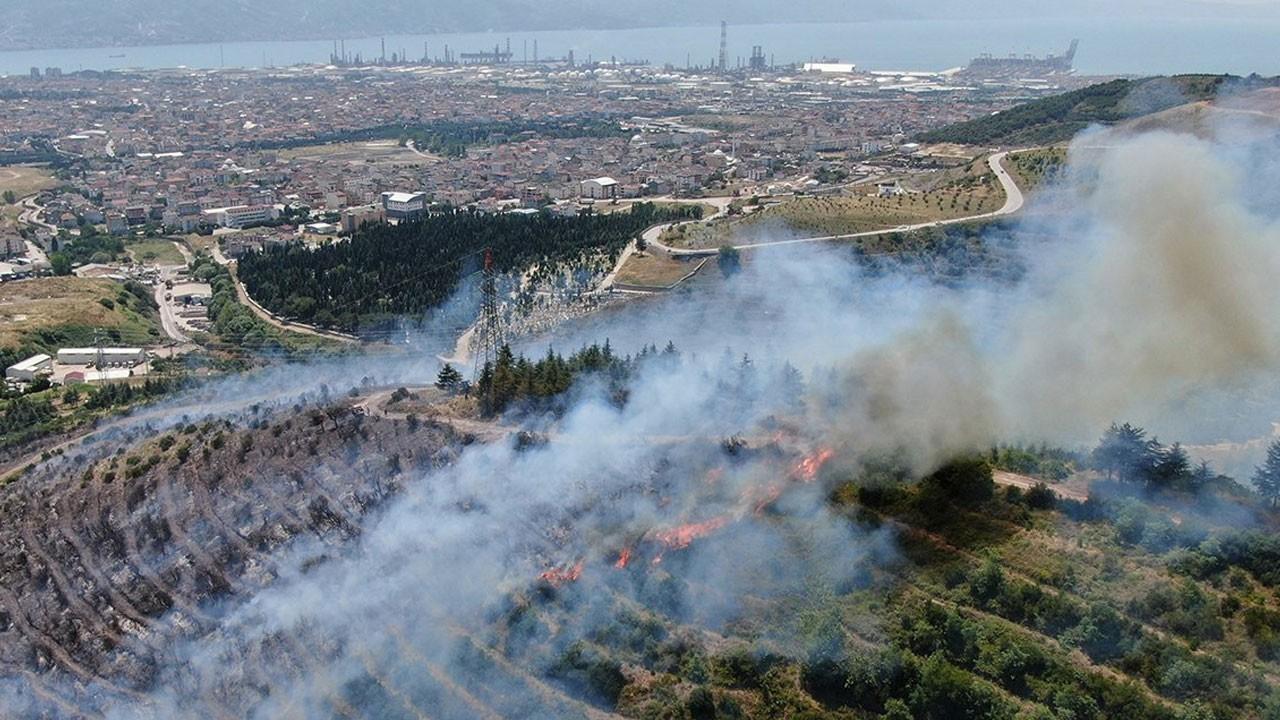 Kocaeli'de ormanlık alanda yangın çıktı