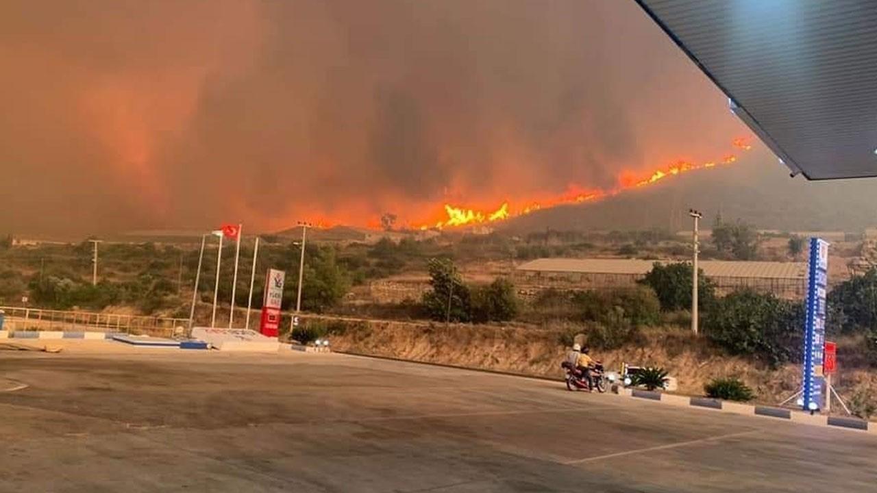 Son dakika... Silifke'de orman yangını çıktı