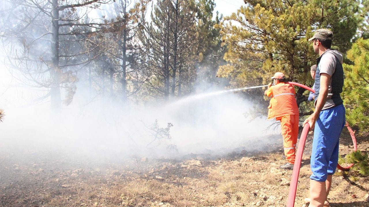 Karaman'da orman yangını çıktı!