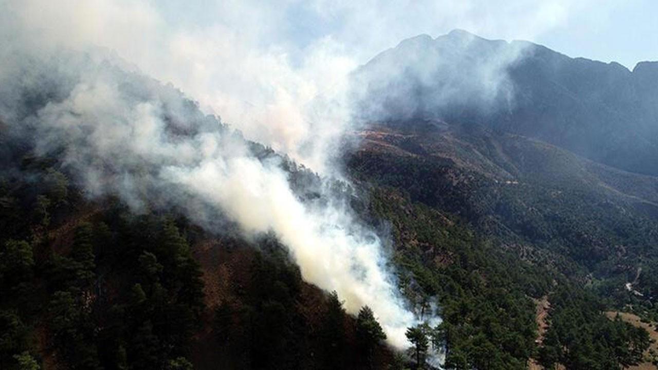 Kayseri'de orman yangını!