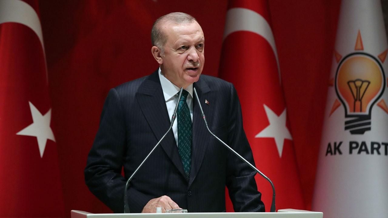 Erdoğan'dan orman yangınlarıyla ilgili açıklama