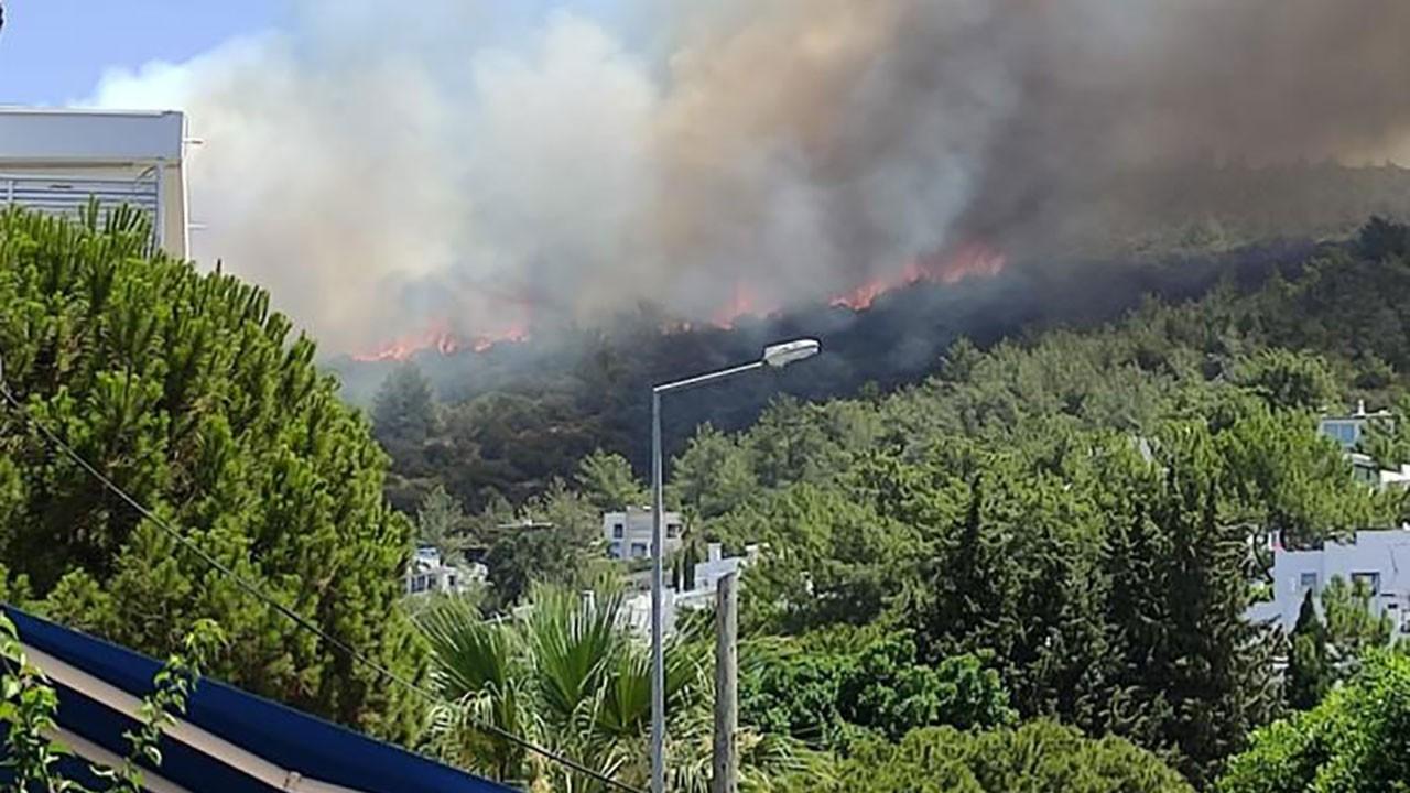 Devler yangın bölgeleri için seferber oldu