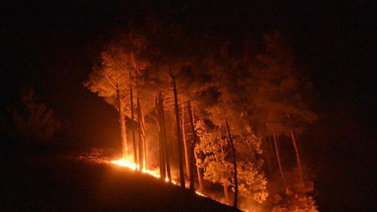 Adana Kozan'daki yangın kontrol altına alındı