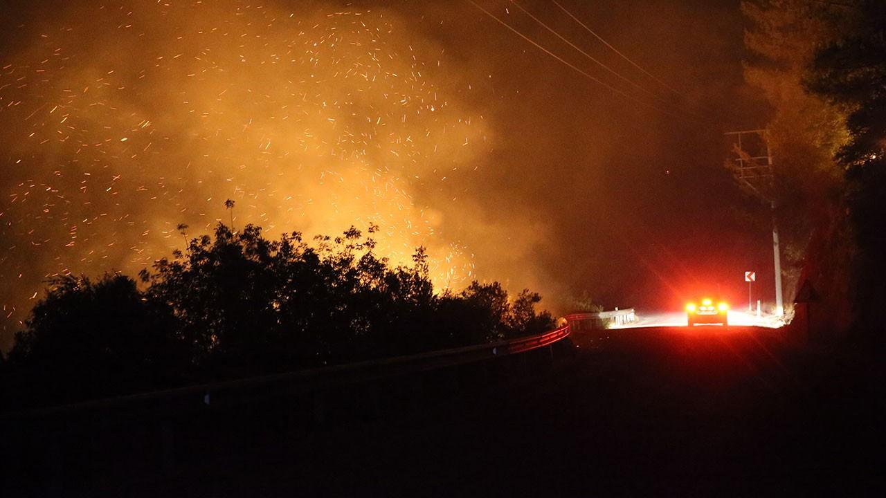 Kimsenin girmesine izin verilmiyor! Bodrum'daki orman yangınında son durum