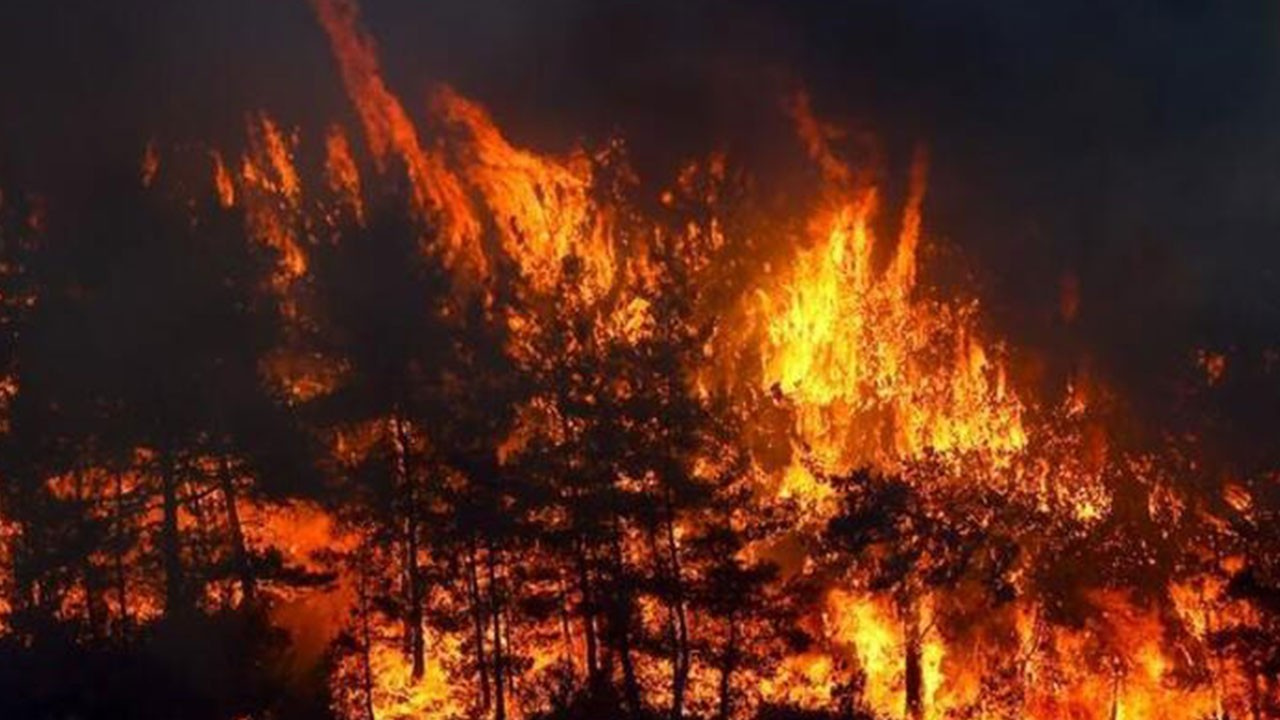 Bakanlık yangınlardaki son durumu açıkladı