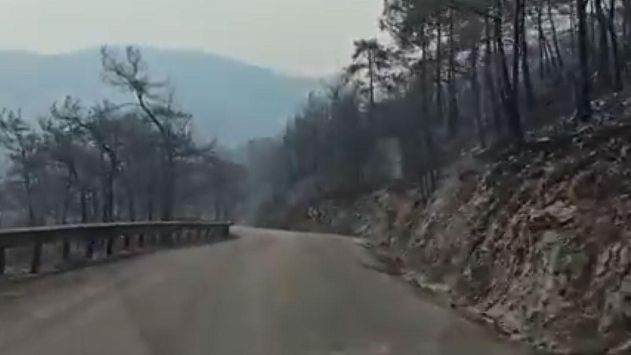Yangının ardından Çökertme yolu görüntülendi