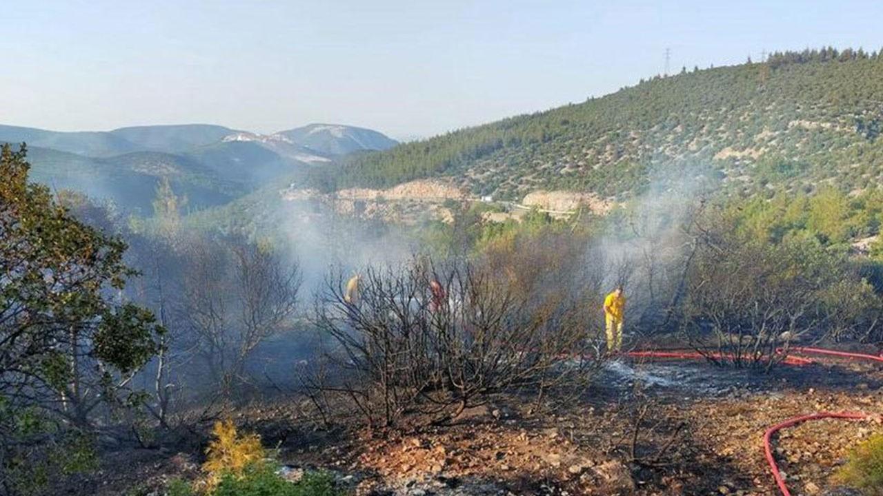 Orman yangını şüphelisi tiner şişesiyle yakalandı