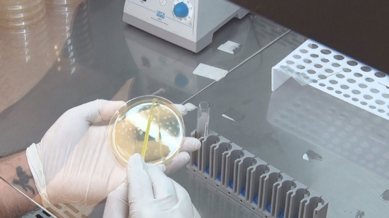 Bilim Kurulu'ndan grip salgını uyarısı!