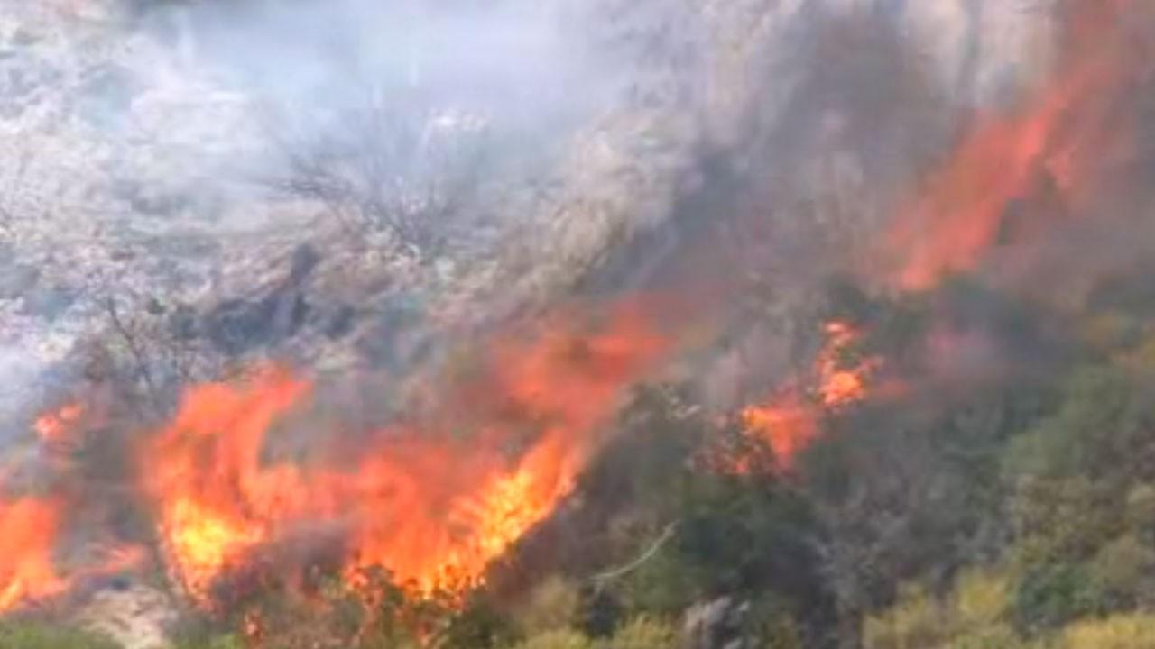 Orman yangınlarına müdahale devam ediyor