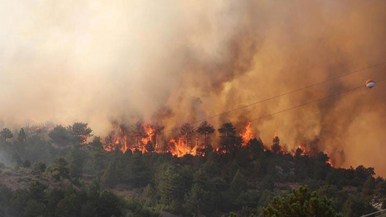 Denizli'deki yangınla ilgili MSB'den açıklama