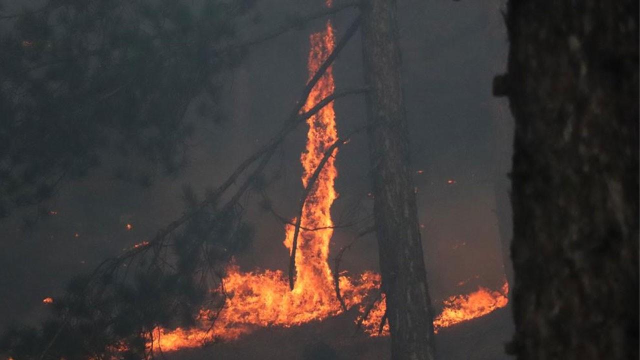 Şehrin iki yakasında da orman yangını çıktı