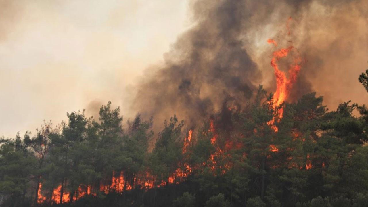 Yangın bölgesine yağmur müjdesi