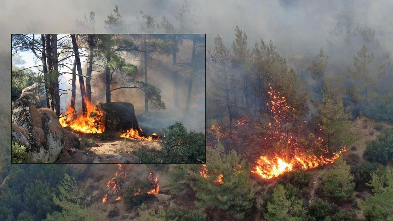 Söndürülemiyor: Gökbel Dağları alev alev yanıyor