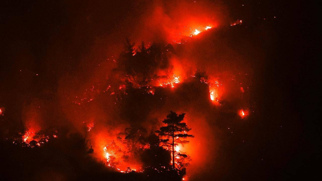 Burdur'un Bucak ilçesinde orman yangını