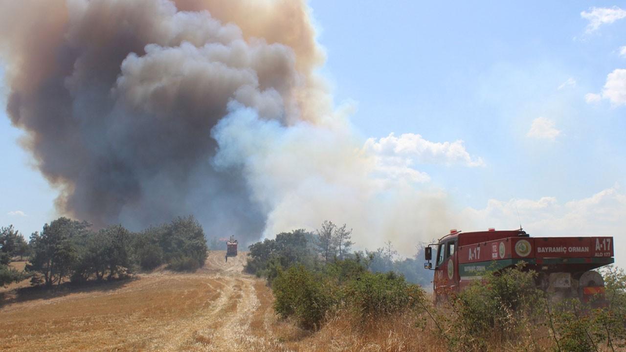 Çanakkale Bayramiç'te orman yangını!