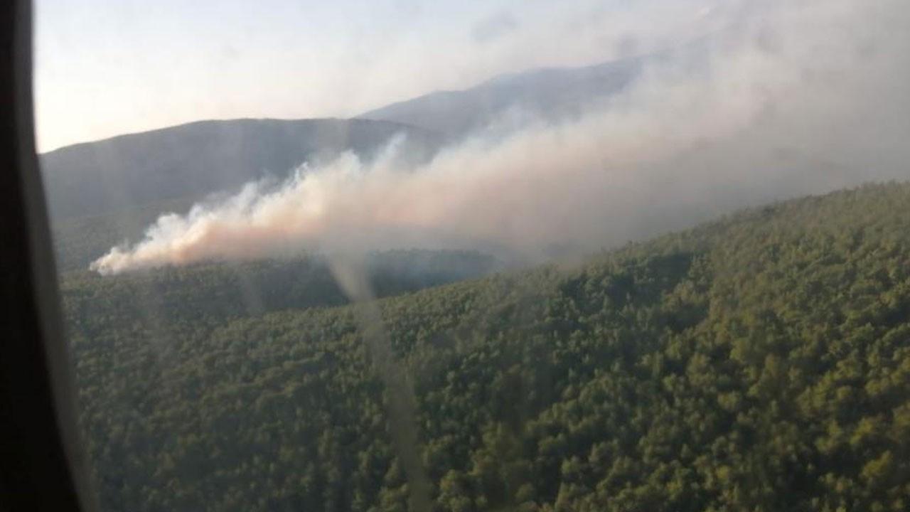 İzmir Karaburun'da orman yangını çıktı