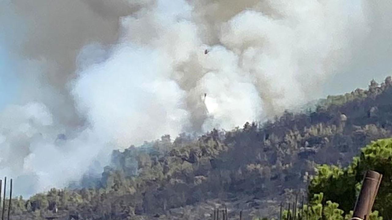 Antalya ve Aydın'da orman yangını!