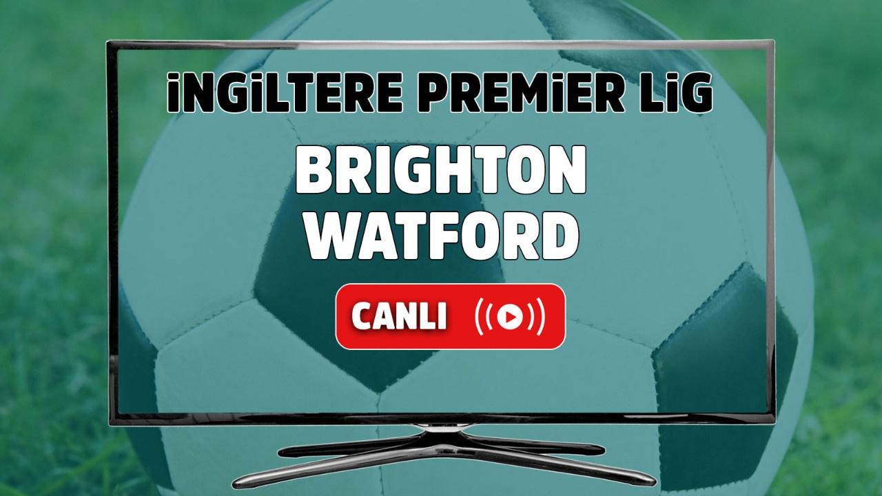 Brighton – Watford Maçı Canlı