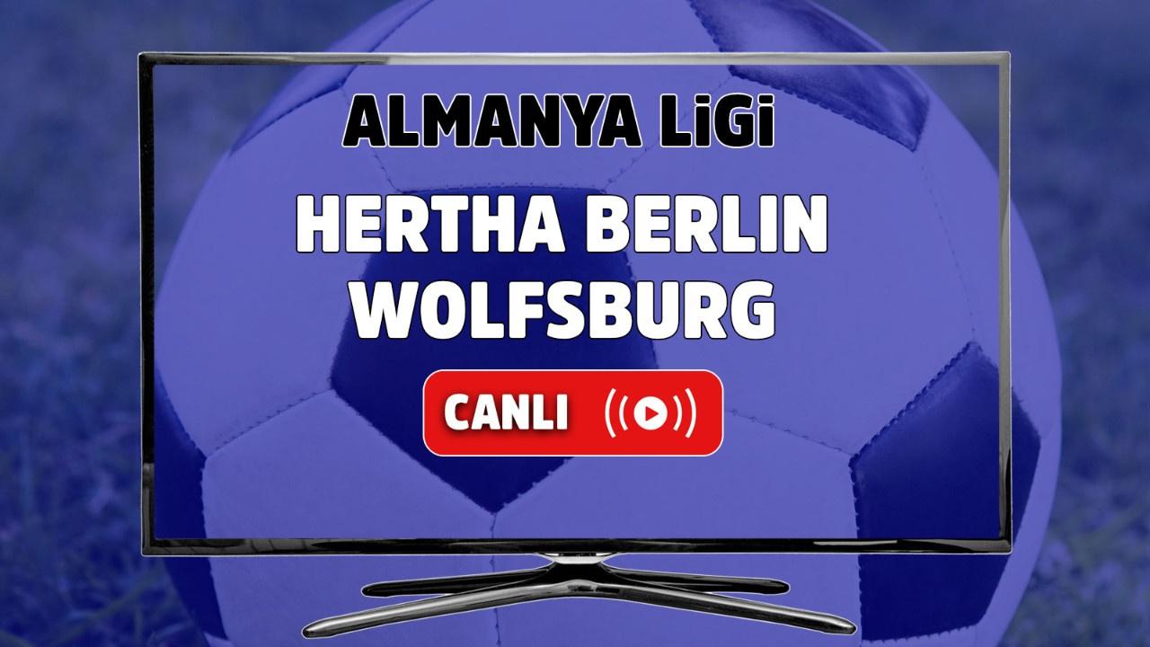 Hertha Berlin – Wolfsburg Canlı