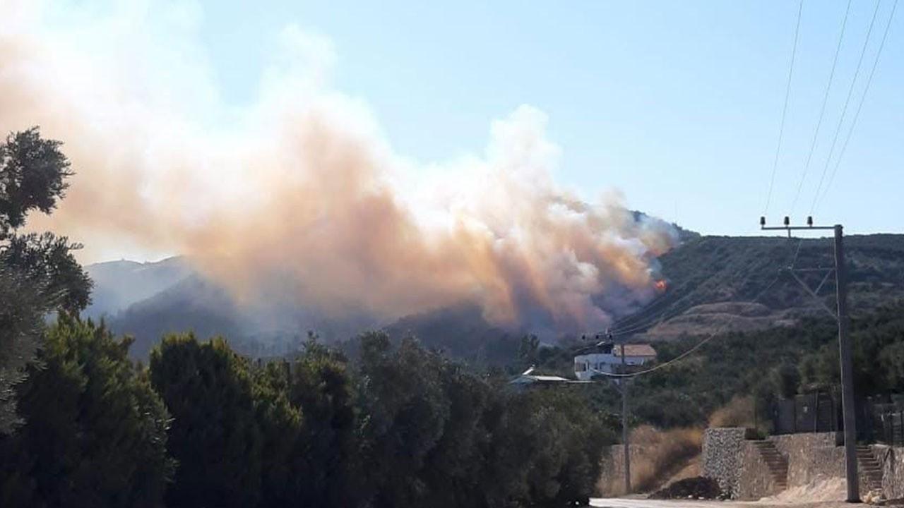 Bursa'da ikinci orman yangını