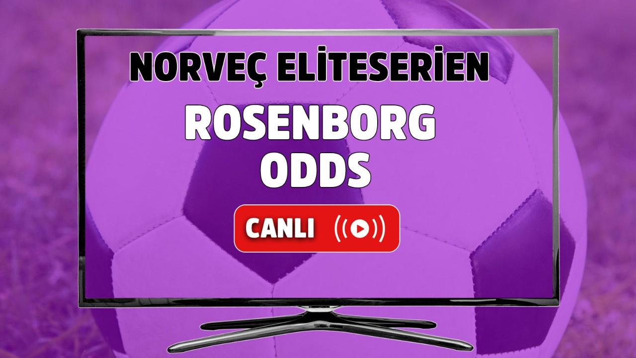 Rosenborg - Odds Canlı