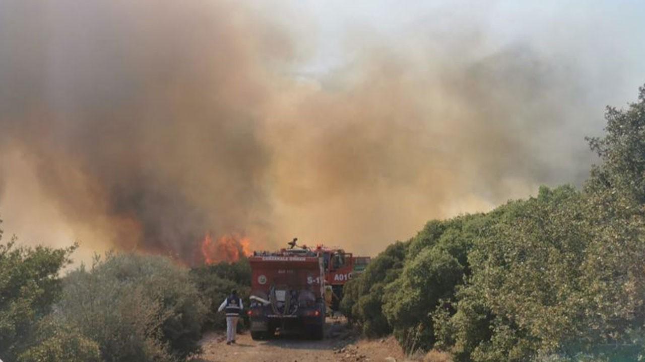 İki ilde korkutan orman yangını!