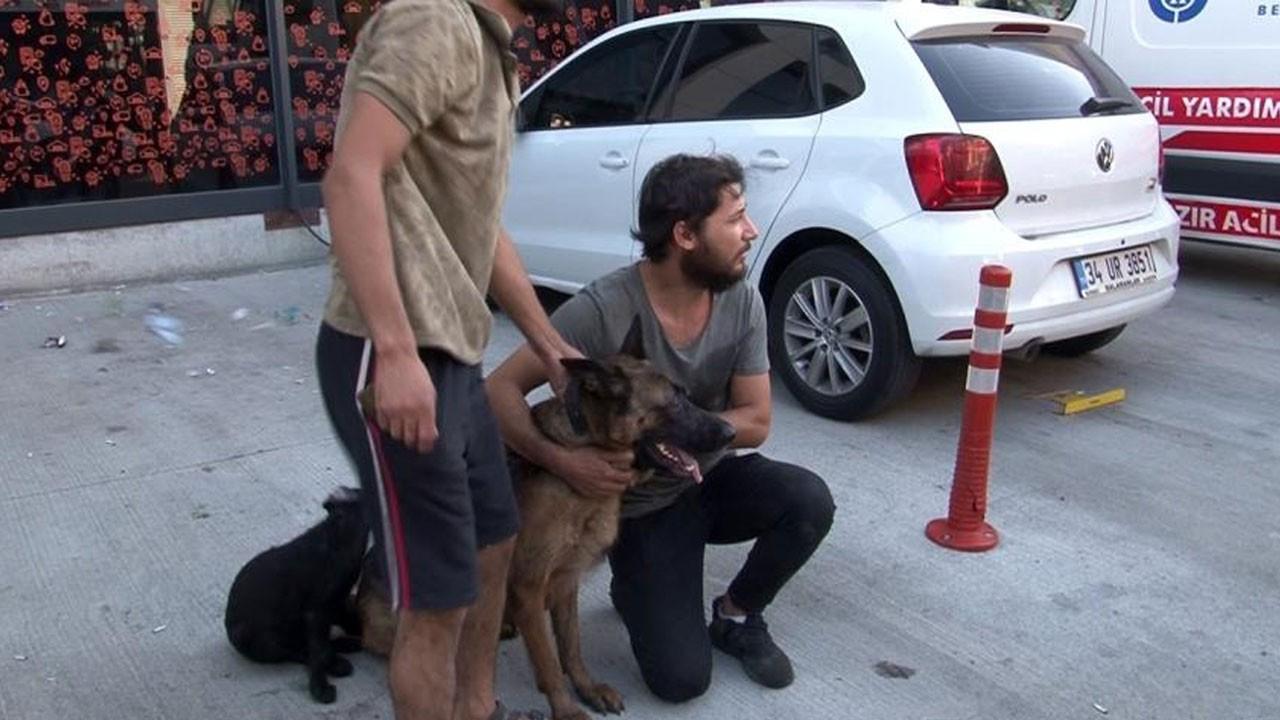 Yangından 12 saat sonra köpeklerini buldu