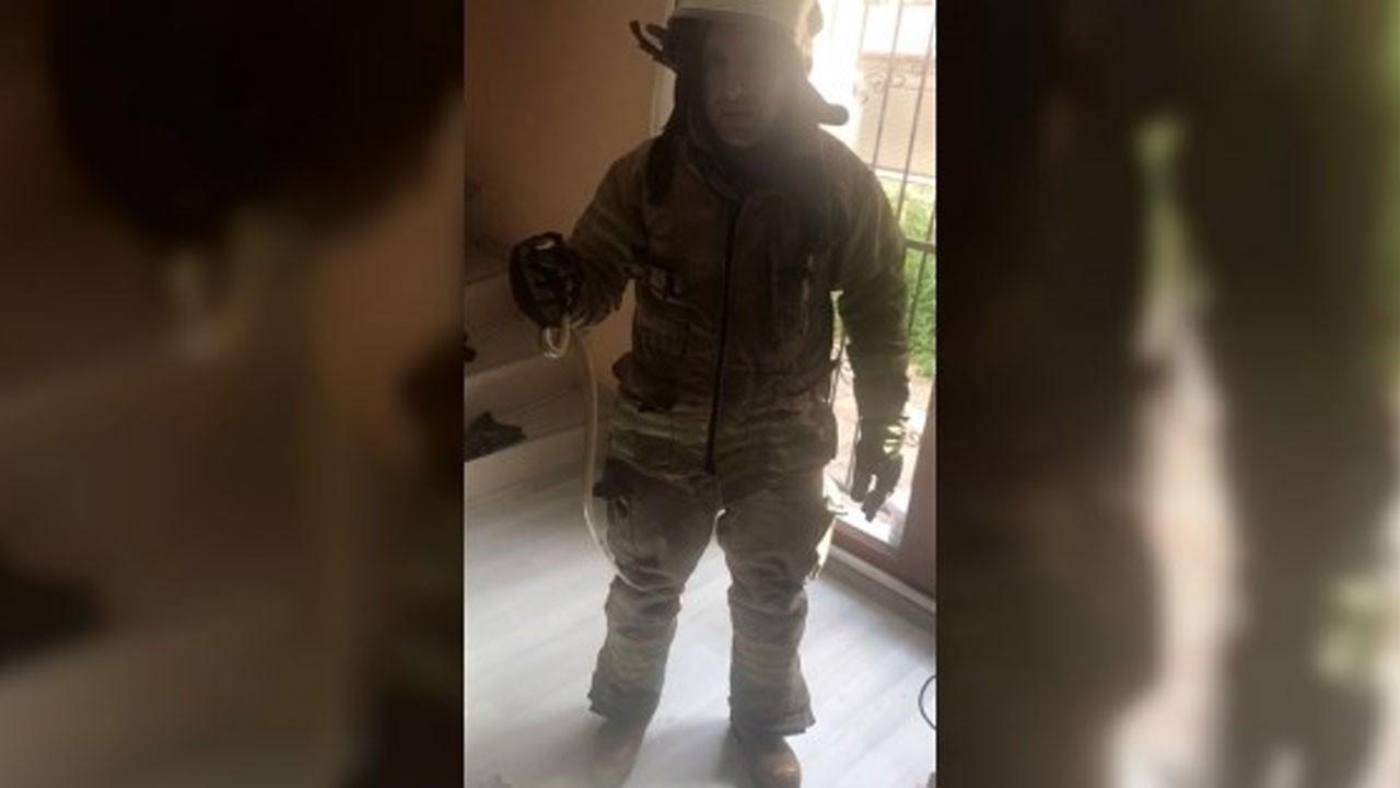 İstanbul Avcılar'da bir eve yılan girdi!