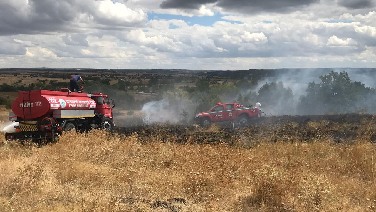 Edirne'de ormanlık alanda yangın