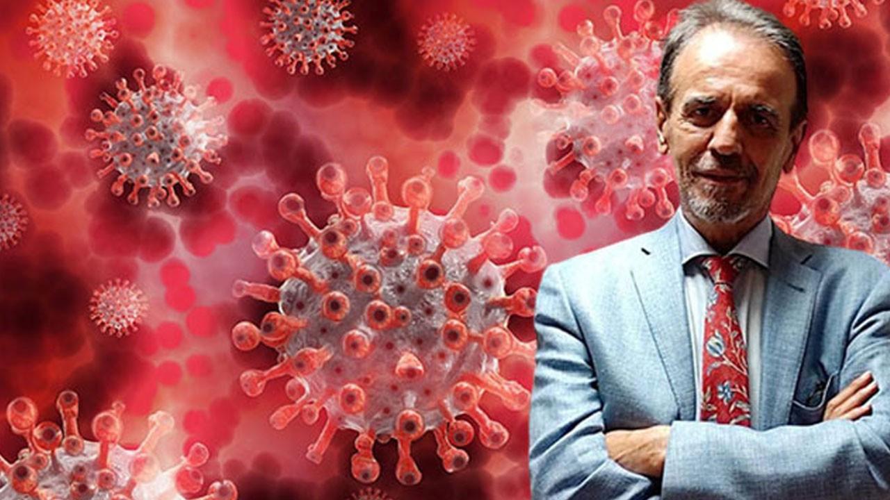 Ceyhan: İki virüs aynı anda vücutta olabilir