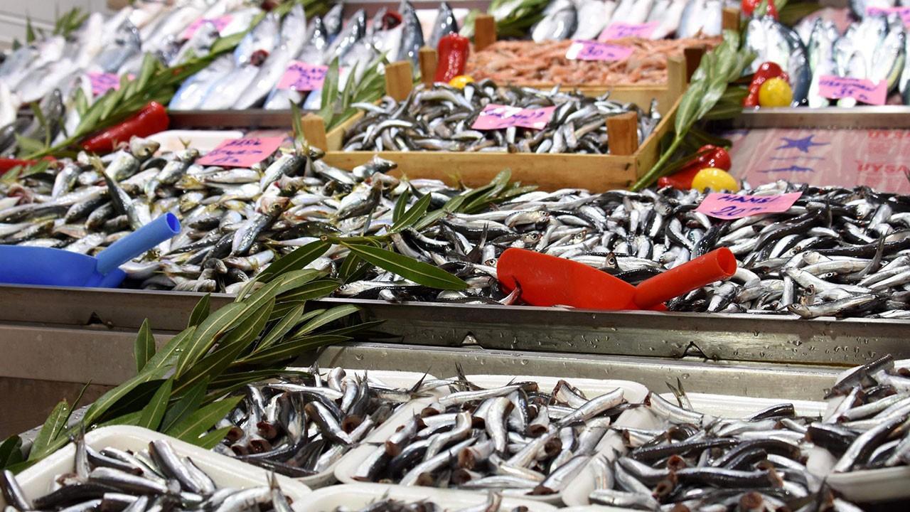 Uzmandan uyarı: Bu balıklara dikkat!