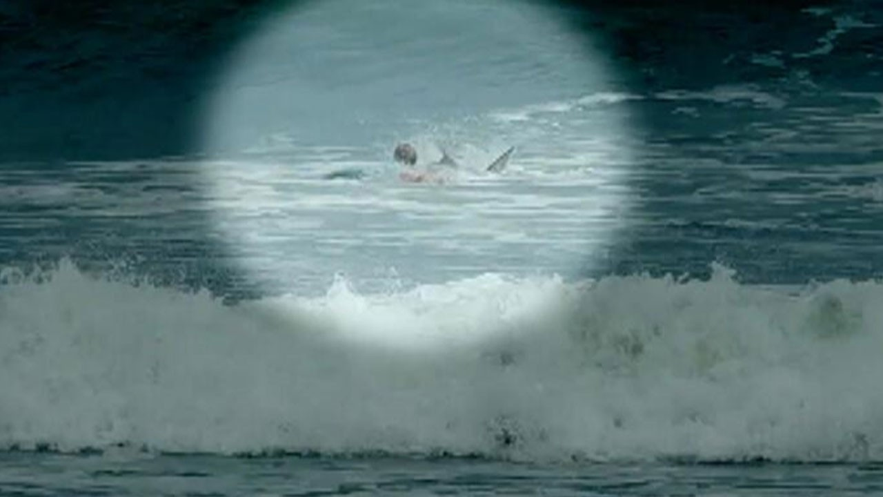 Köpek balığı saldırısı kamerada!