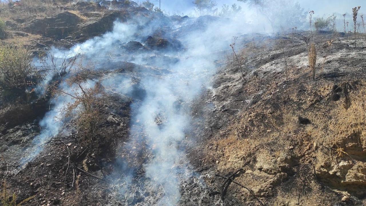 Mersin'de orman yangını kontrol altına alındı