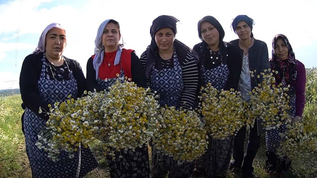 Afyon'un üreten kadınları 4 milyon ciroya koşuyor