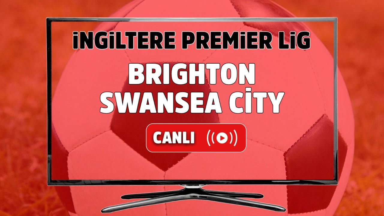 Brighton- Swansea City Canlı maç izle
