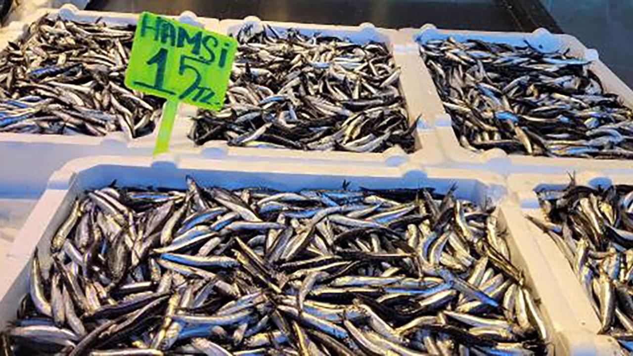 Karadeniz'de hamsinin fiyatı yarıya düştü