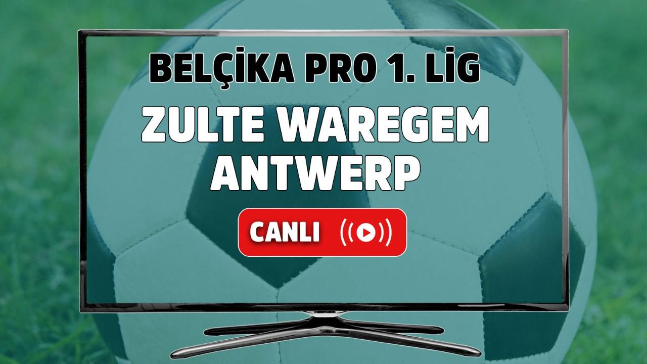Zulte Waregem-Antwerp canlı maç izle